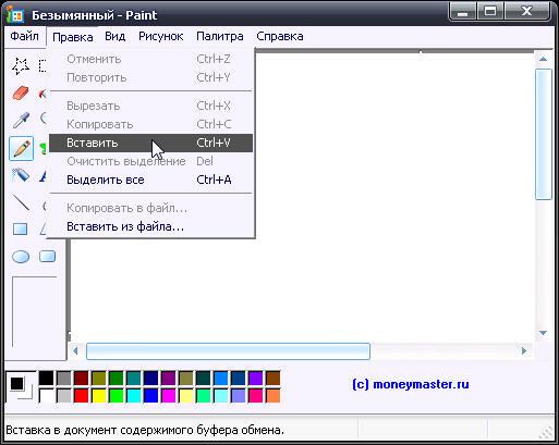 Как сделать на ноутбуке и поместить на свою страницу