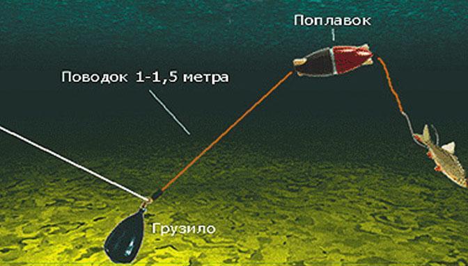 Подводный поплавок на сома своими руками