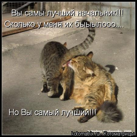 vilizivay-u-menya