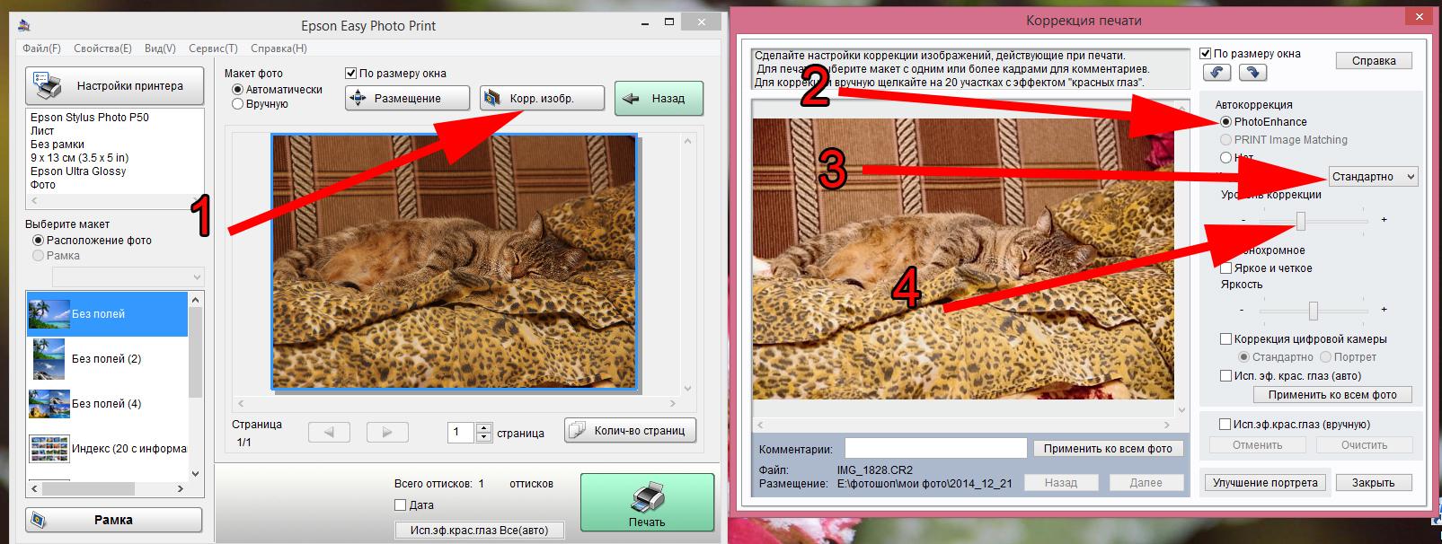 Ответы@Mail.Ru: Принтер (Epson L800) печатает темные и тусклые фотографии, с чем это связано? как исправить?