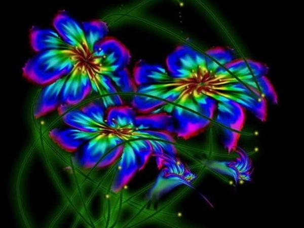 Фото волшебный цветок