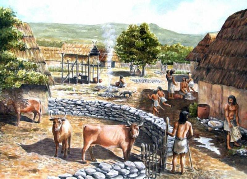 neolithic and industrial revolutions that changes earths resources Chapter 8 human population the neolithic revolution is most clearly seen in human culture today in our use of green and industrial revolution.