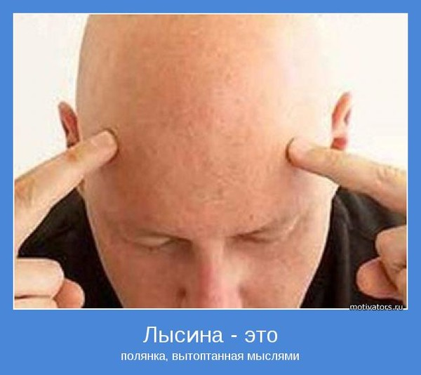 Сонник лысина на своей голове