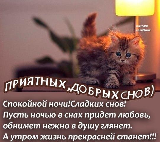 Приятного сна открытка