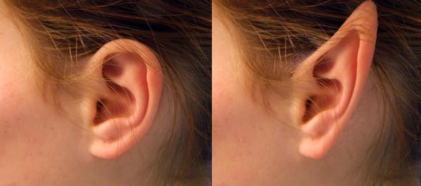Как сделать ухо из пластика