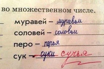 В российском языке роль местоимений достаточно принципиальна