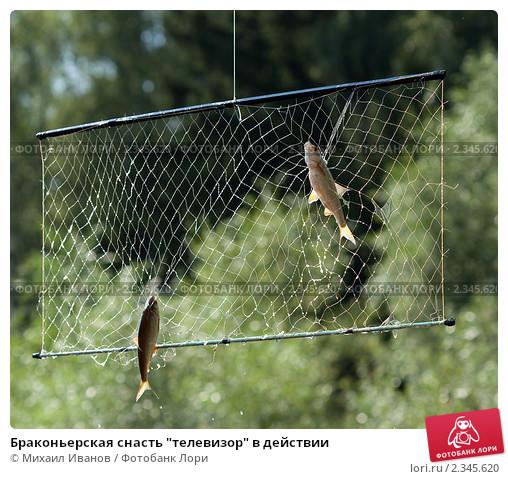Как правильно сделать экран для ловли рыбы