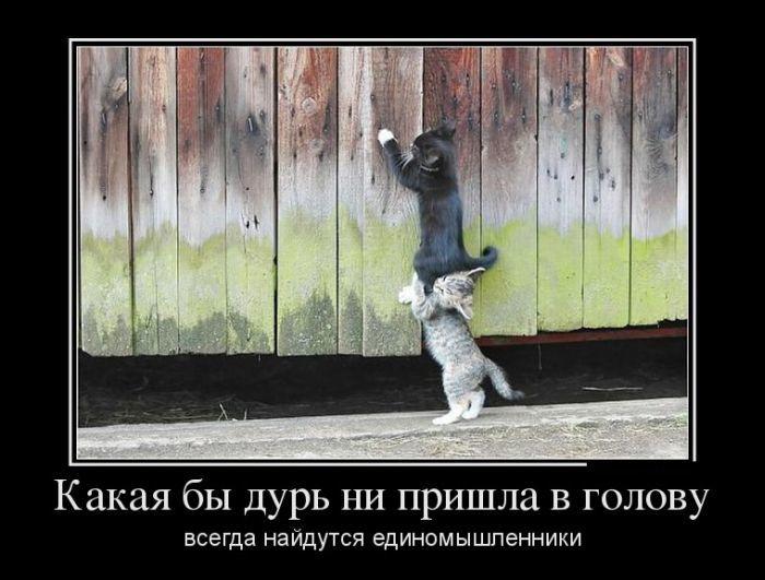 http://otvet.imgsmail.ru/download/47f4b1382a9652915da2f2c0f8eca23c_h-1614.jpg