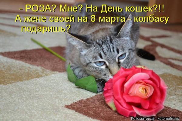 Леночка,поздравляю с 8 марта!!!!желаю счастья и любви!