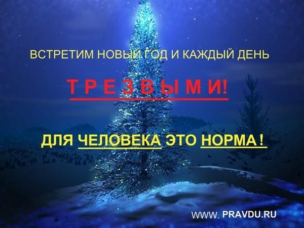 Встречу новый год один водка
