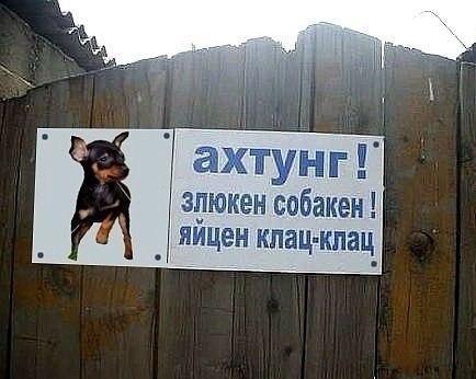 Надпись осторожно злая собака уже
