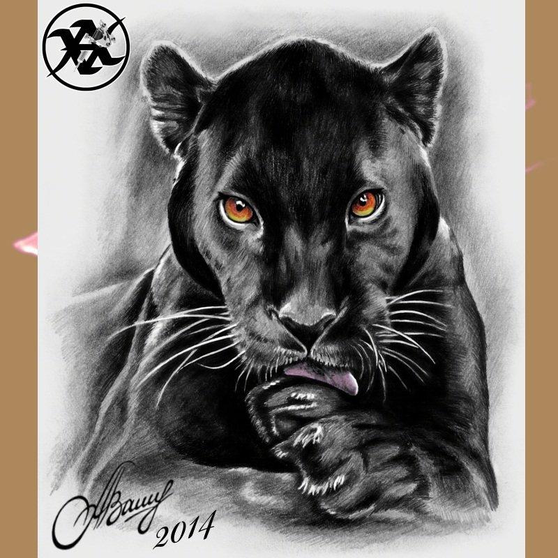 рисунки пантеры в карандаше