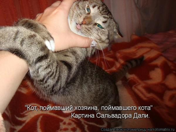 lizhet-kisku-paren