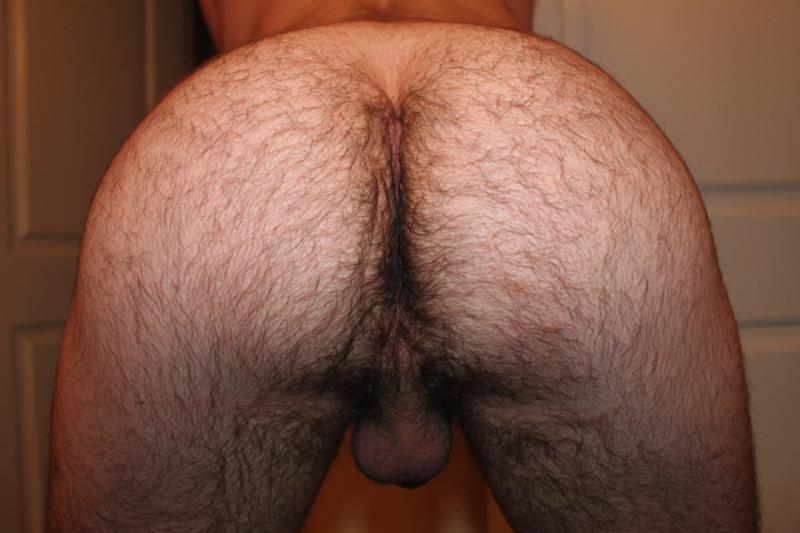 волосатые жопы мужчин фото