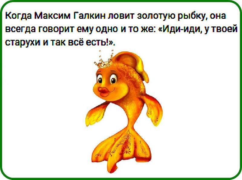 Видео Анекдот Про Золотую Рыбку