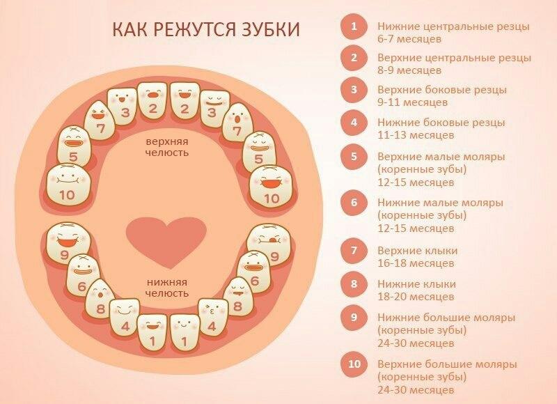 Что делать что бы не появлялись зубные камни