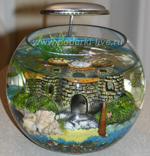 Настольный аквариум своими руками 67