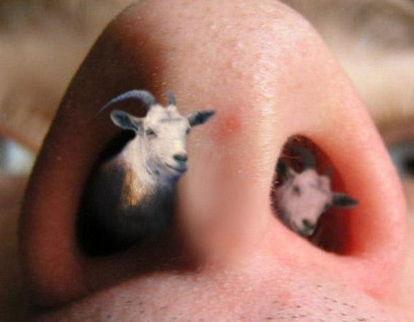 babi-koviryayut