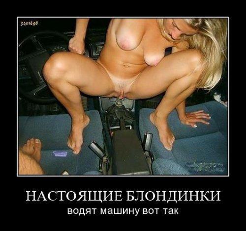 yarkin-aleksandr-golie-foto