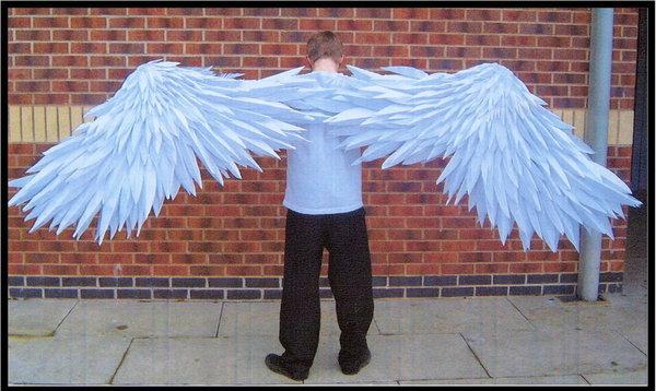 Как сделать костюм птицы с крыльями своими