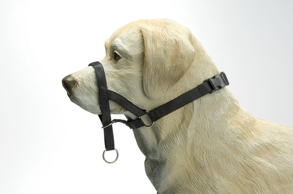 Намордник уздечка для собак