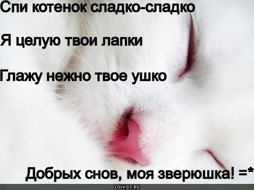 Открытка ты спишь а я целую