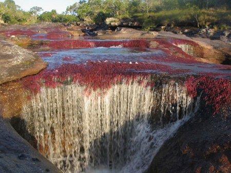 Цветная река где находится и что из