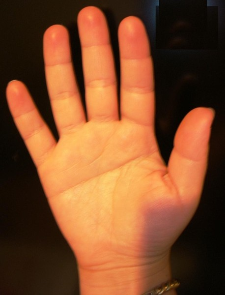 Скачать песню линия на моей руке