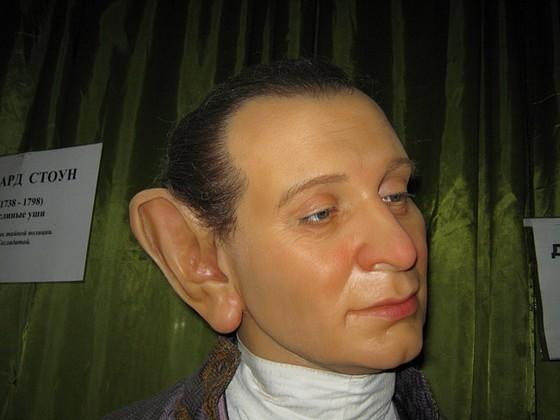 Самые большие уши