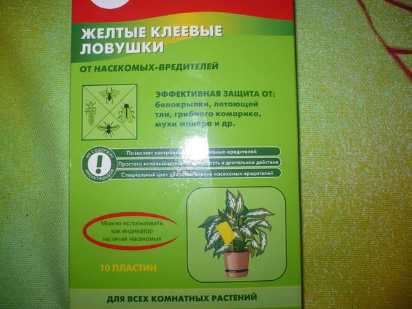 Как избавиться от мушек в цветах