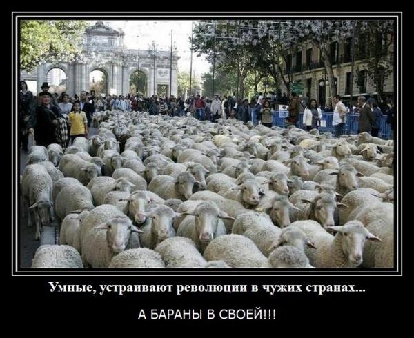 http://otvet.imgsmail.ru/download/69f10210be0bb600214486b8f8b6e48c_i-2439.jpg