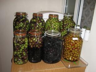 Как солить оливки в домашних условиях