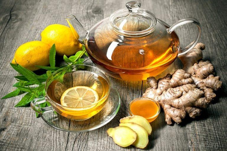 фотография чайной плантации