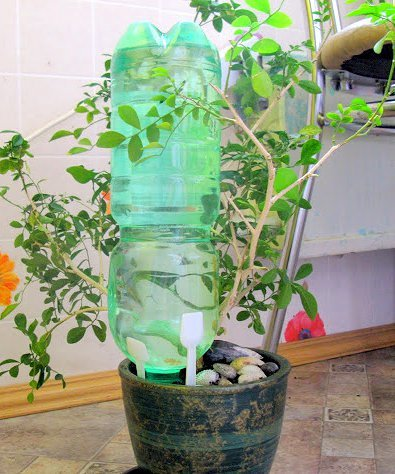 Автополив из пластиковых бутылок