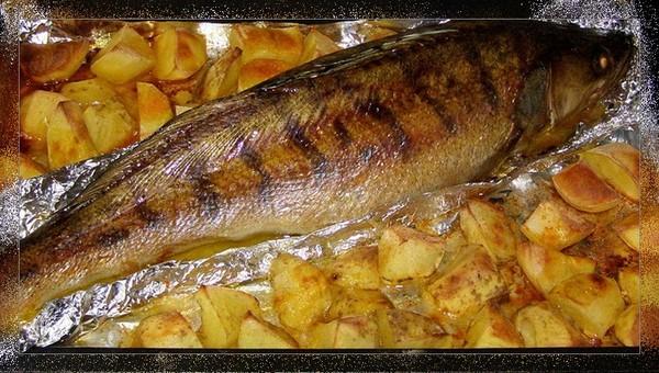 Холодец из свинины рецепт пошагово с желатином