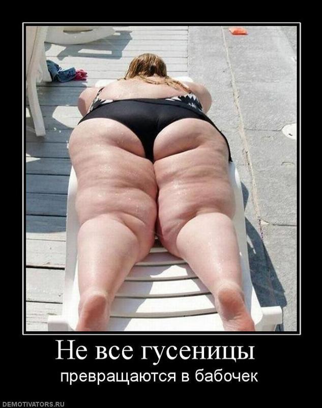 porno-video-tolstenkaya-popka
