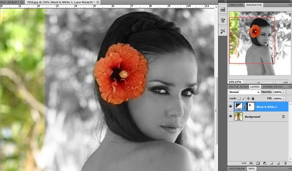 Как с черно белой фотографии сделать цветную онлайн
