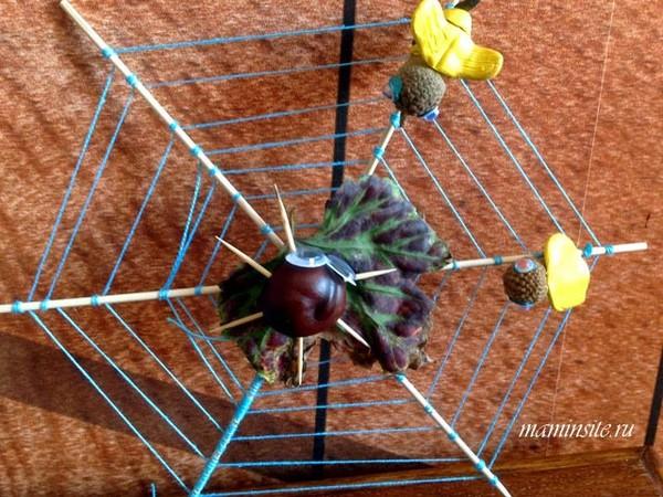 Осенние поделки паук из каштана на паутине