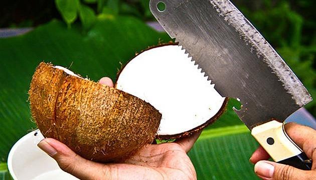 Чем можно разбить кокос