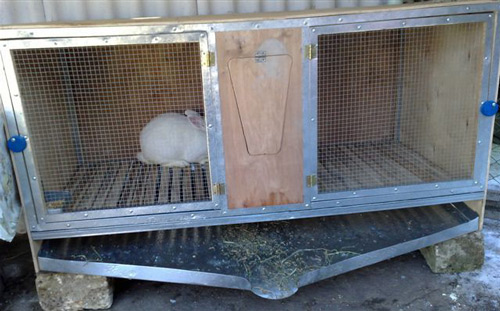 Клетки для кроликов своими руками самые простые