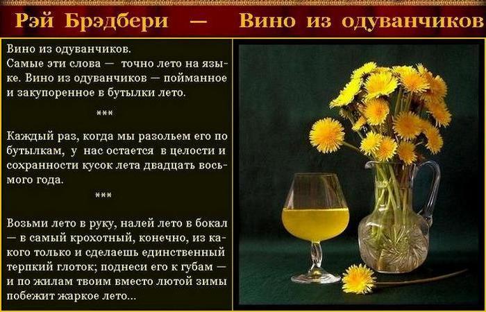 Вино из одуванчиков стих
