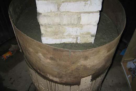 Выращиваем укроп и петрушку в домашних условиях
