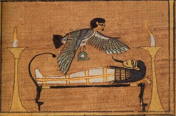 Как сделать мумию птицу