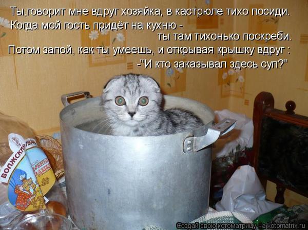 Рецепт приготовления кошки
