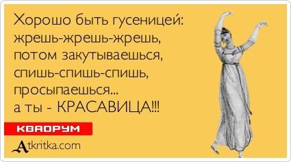 eroticheskoe-teleshou-na-tv-forum