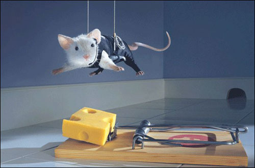 Mouse cheese factory childrens movie