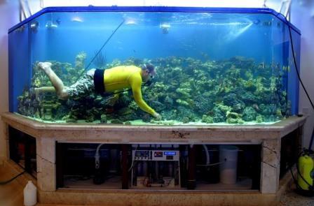 Как сделать правильно аквариум своими руками