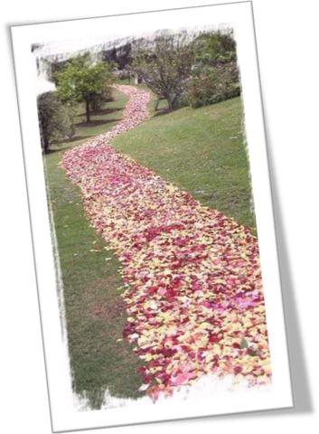 В луцке цветами устлали последний путь двух айдаровцев