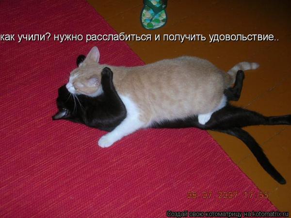 dnepropetrovskaya-obl-porno