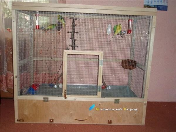 Как сделать вольер своими руками для волнистых попугаев